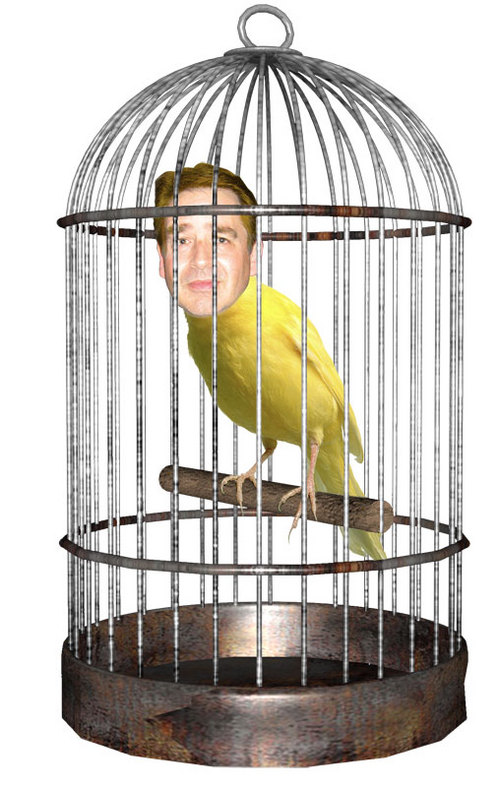 Weston: He'll want some high class caviar in his cage